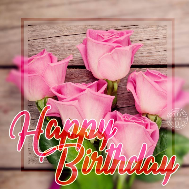 Beautiful pink roses floral birthday card