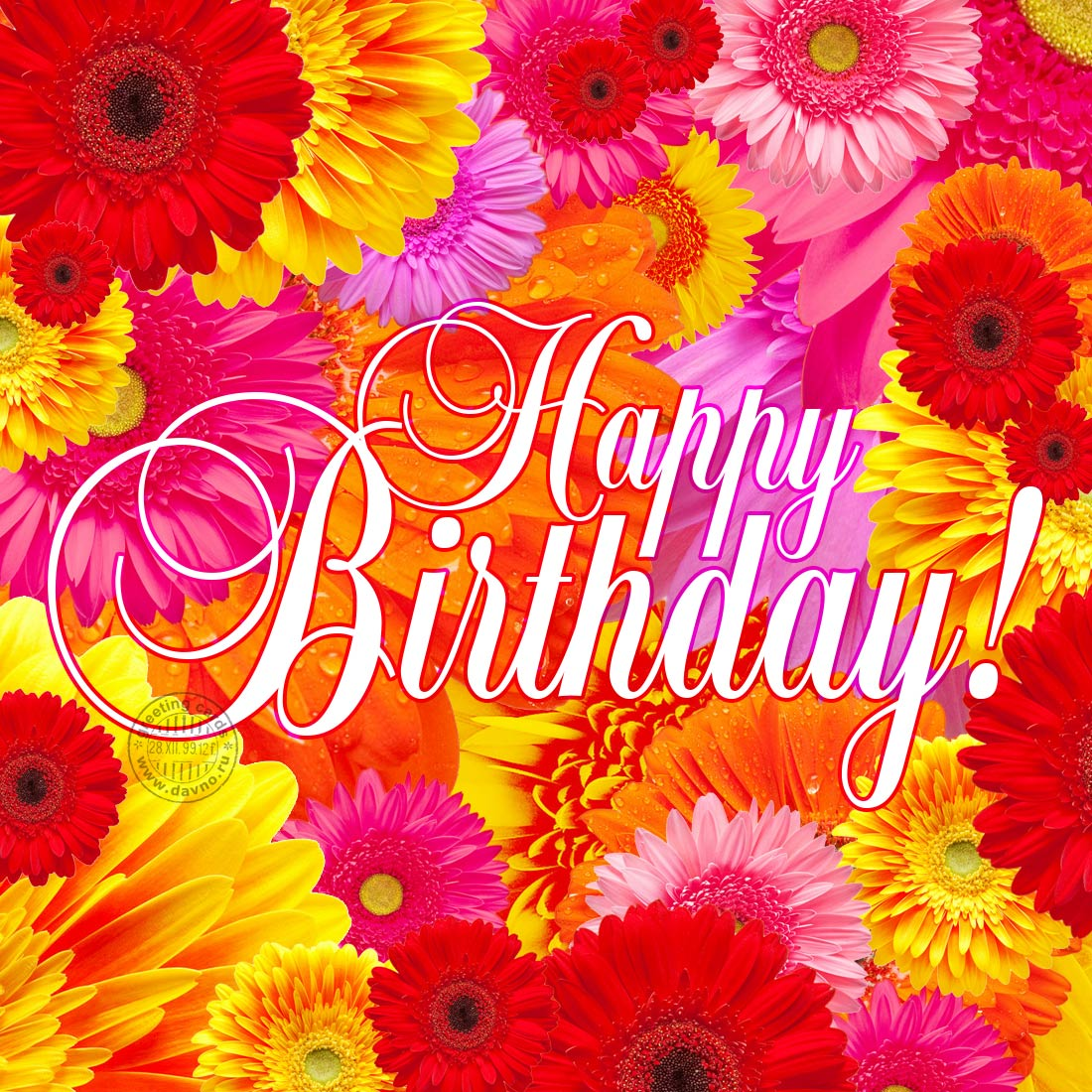 Bright Flowers Happy Birthday Card Download On Davno