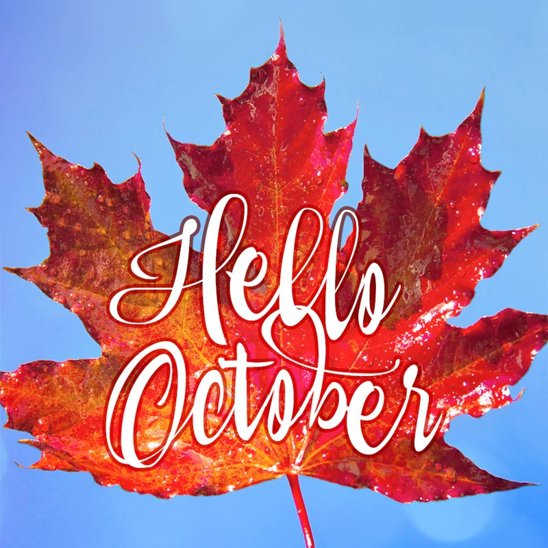 Cute October Greeting Card