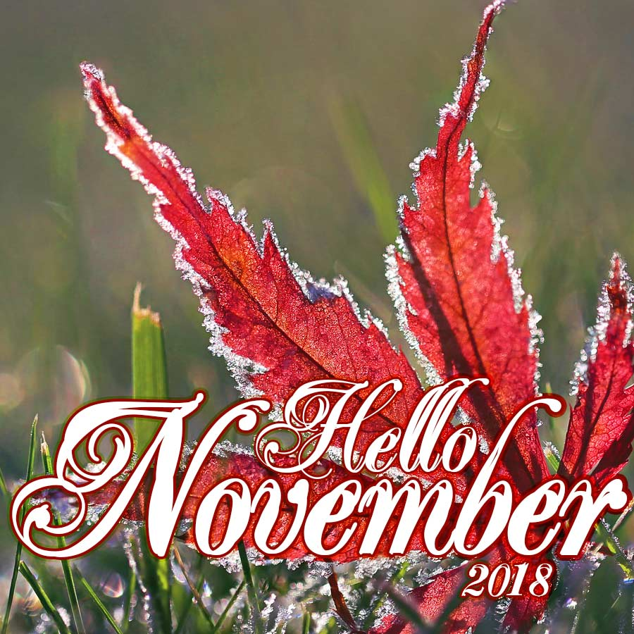 Hello November! Download and share our free inspiration card.