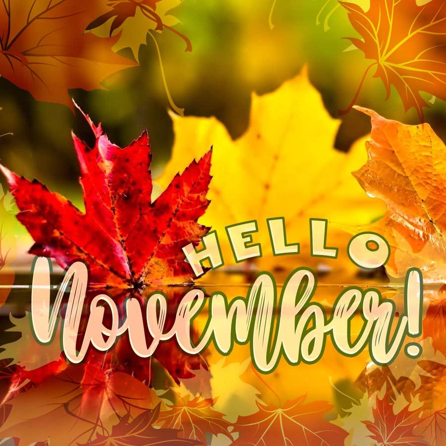 Hello November!