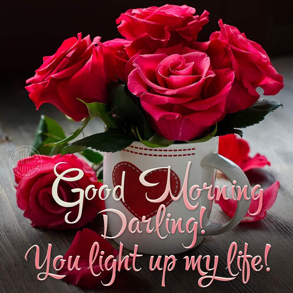 Good morning darling! You light up my life!