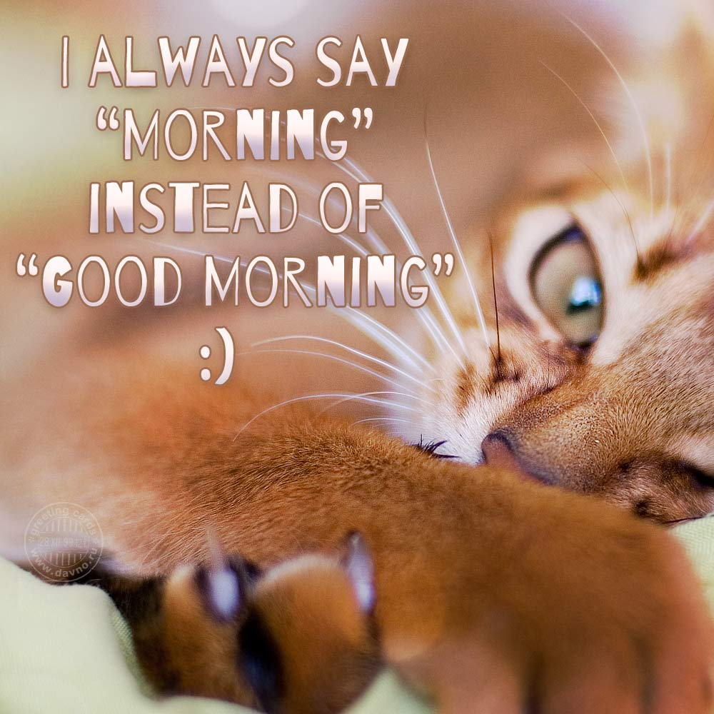 I always say Morning instead of Good Morning :)