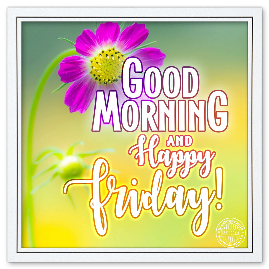 Good Morning And Happy Friday Free Download Card 184 Category