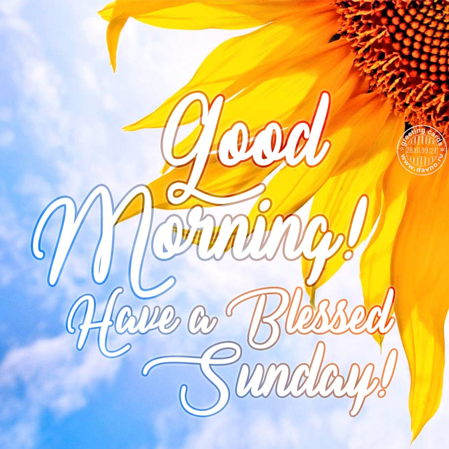 Good morning have a blessed sunday free download card 188 good morning have a blessed sunday m4hsunfo