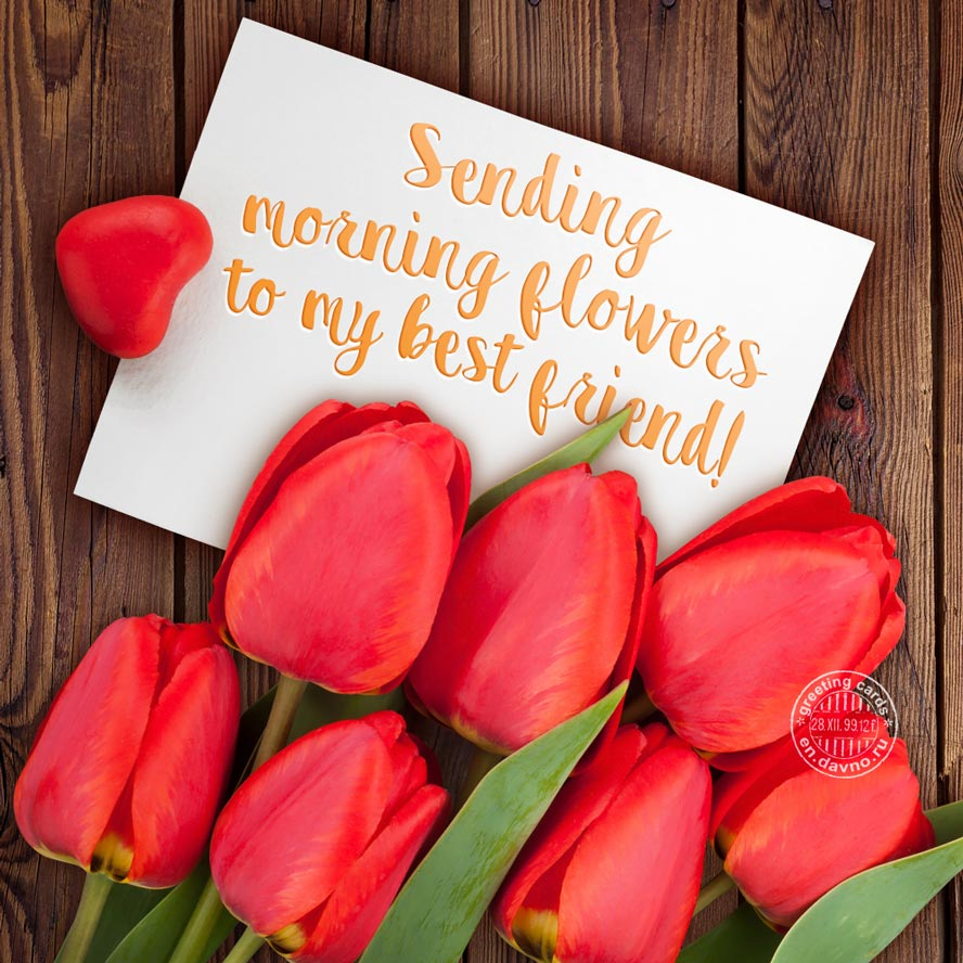 Sending morning flowers to my best friend!