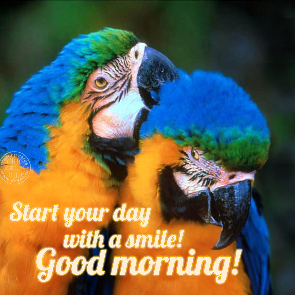 Start your day with a smile!
