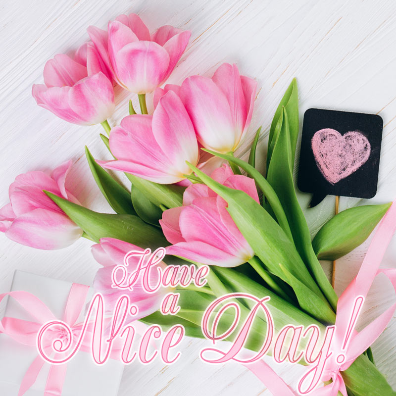 Have a Nice Day. Lovely card with pink tulips.