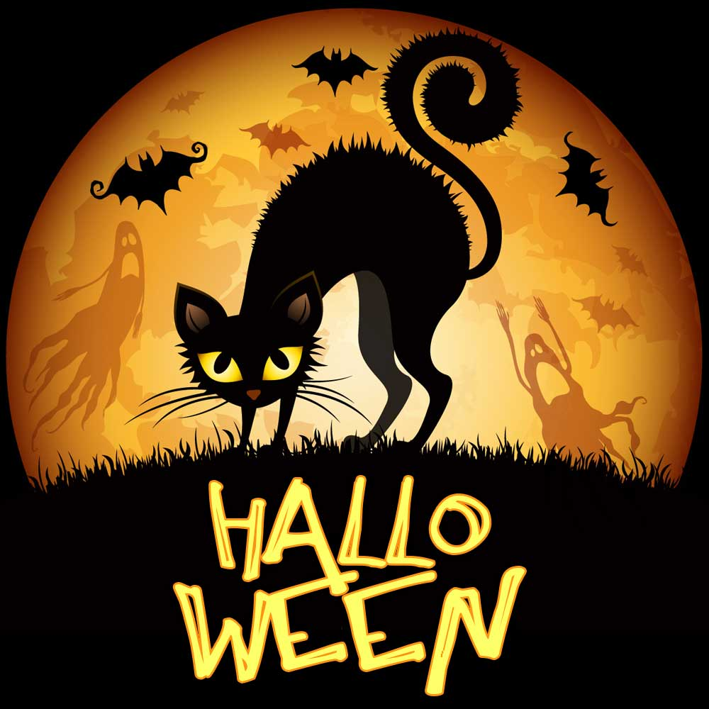 Black Cat Halloween Greeting Card Free Download Card 829 Category