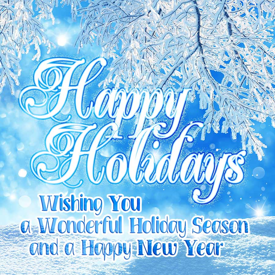 Happy Holidays 2019. Wishing you a wonderful holiday season and a happy new year.