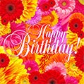 Bright Flowers Happy Birthday Card