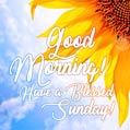 Good Morning! Have a Blessed Sunday!